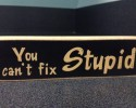 cant fix stupid